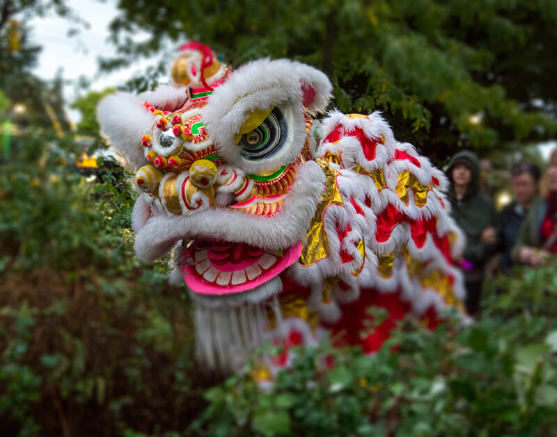 A Chinatown lion dance troupe in the trees with people in the background