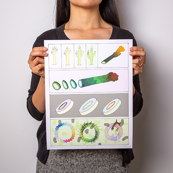 Person holding up Sunny Nestler's Cactus Discs print against a white backdrop